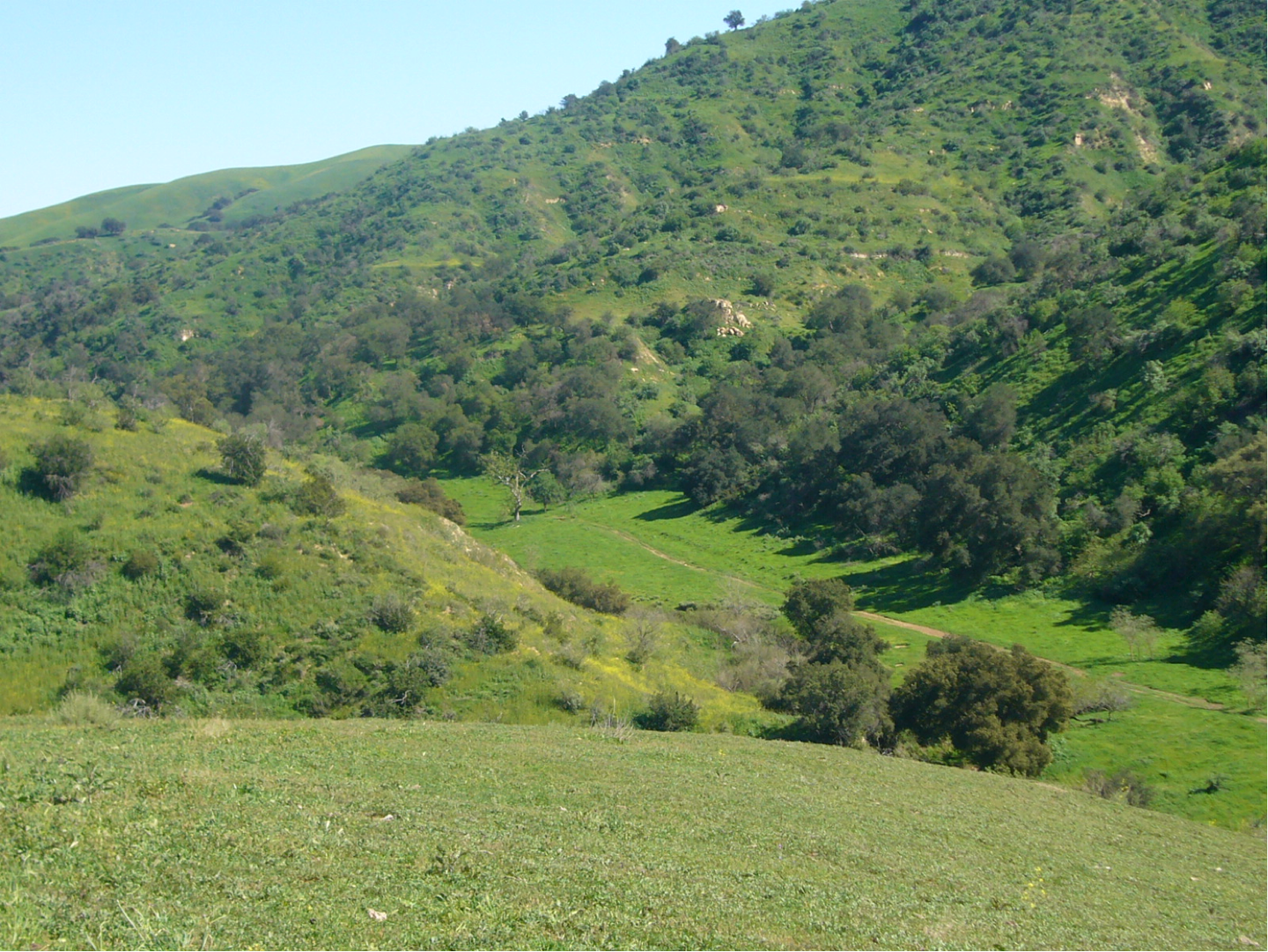 Photo of Soquel Canyon